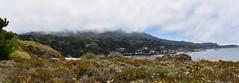 China Cove (nick.amoscato) Tags: ca california pointlobos lobos reserve bigsur