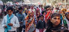 Holi Pilgrim Crowd, Vrindavan India (AdamCohn) Tags: abeer adamcohn hindu india vrindavan crowd gulal holi pilgrim pilgrimage street अबीर गुलाल होली