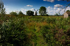 Hardley Drainage Mill (A Picture Of Norfolk) Tags: hardley drainage mill langley marshes norfolk cantley wherrymansway windmill gate countryside landscape riveryare