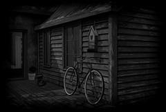 A Pillow of Winds (Loegan Magic) Tags: secondlife night home porch bicycle birdhouse vintage moonlight dreams peaceful pinkfloyd apillowofwinds lyrics