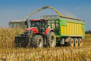 Corn Silage 2018 | CASE IH // JOSKIN // CLAAS