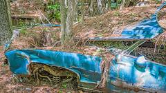 Old Car City 154 (augphoto) Tags: augphotoimagery abandoned auto automobile car decay old texture weathered white georgia unitedstates