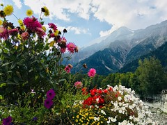 Best of Tour Mont Blanc (Zen_Dark_30) Tags: tourmontblanc tmb switzerland italy france trekking alpenwild hiking montblanc mountains alps scenery landscapes people refugioelena arpettechampex chamonix colferret courmayeur nationalpark environment ecology climbing