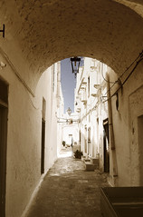 Ostuni, With Or Without Cat (Coquine!) Tags: christianleyk ostuni puglia apulia apulien italy italia italien white weiss bianco alley gasse narrow mediterranean mittelmeer