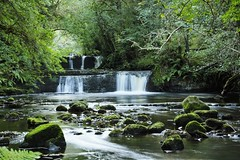 Fowley's falls. (carolinejohnston2) Tags: waterfall river woods stream flow rocks moss fermanagh leitrim trees leaves longexposure outdoors landscape ferns natural ireland