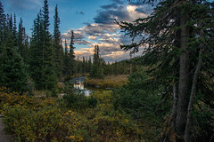 Long Lake Outlet (RkyMtnGrl) Tags: lake outlet trees clouds stream reflections evening stroll longlake indianpeakswilderness colorado 2018 landscape nature scenery nikon 28300mm