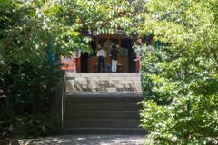 Toh-sho-gu shrine of Shiba (2) (White_Dragon_09) Tags: kodak ektar 8028 hasselblad