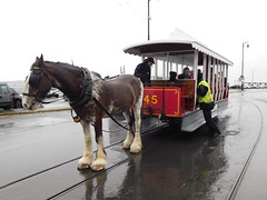 Douglas Bay Horse Tramway: Douglas and Car 45, Sea Terminal (28/07/2018) (David Hennessey) Tags: douglas bay horse tramway car 45 sea terminal