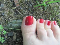 Nina Ultra Pro | Cranberri (markrudolph203) Tags: gay homosexual dude guy man male nail nails toe toes toenail toenails paint painted color colored enamel nina ultra pro cranberri