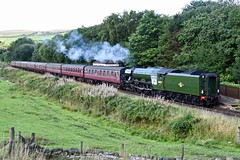 East Lancs Railway Irwell Vale Lancashire 25th August 2018 (loose_grip_99) Tags: elr eastlancs railway railroad rail train irwell vale lancashire northwest england uk steam engine locomotive lner gresley a3 pacific 462 60103 flyingscotsman preservation transportation gassteam uksteam trains railways august 2018