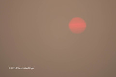Smokey / Hazy Sunrise (Trevdog67) Tags: smokey hazy sunrise moncton newbrunswick canada august2018 summer2018