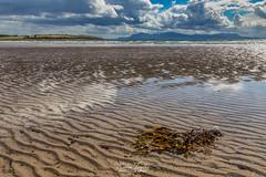 Ettrick Bay (robinta) Tags: seaandsand sea water ocean seascape sand landscape bute scotland ngc nature seaweed nationalgeographic sigma canon 200d sigma1770 seaside beach