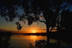 Reflections (Dreaming of the Sea) Tags: sunset gumtrees sky tamronsp2470mmf28divcusd nikond7200 water clouds dusk twilight burnettriver bundaberg queensland australia sun goldensunset goldenhour bluesky reflections