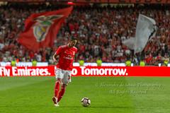 #34 André Almeida (Alexandre de Sousa Photography) Tags: 2018 lisbon lisboaregion portugal pt lisboa slbenfica benfica sport sports andre almeida champions league uefa player game match