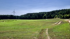 Sommerwiese (GekonntPlanlos) Tags: lumix gf7