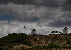 jlvill  142  Ahora si, presencia de color (jlvill) Tags: nubes cielo campo rural arbol plantas 1001nights 1001nightsmagiccity