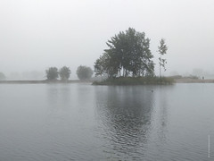 IMG_20180911_071331-01-site (amm78) Tags: amm78 mobilephotography stpetersburg kupchino russia morning fog water tree