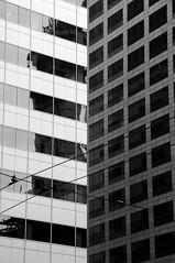 Illusion (girona90) Tags: bnw bw seattle usa america washington blackandwhite blancoynegro bn architecture geometry building city cityscape urban byn monochrome monochromatic lineas geometría arquitectura edificio líneas ventana ventanas monocromático