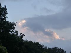 Cagnotte, Landes (Marie-Hélène Cingal) Tags: cagnotte paysdorthe 40 landes aquitaine nouvelleaquitaine sudouest france nwn clouds sky