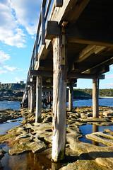 How did I get here? (autumn_ladybugs) Tags: jetty pier water sea blue sky travel australia nsw sydney laperouse bridge fort bareisland island wood stone city boardwalk