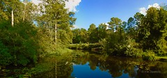 Diascund Creek (r.w.dawson) Tags: newkentcounty virginia va usa panorama creek waterway diascundcreek landscape
