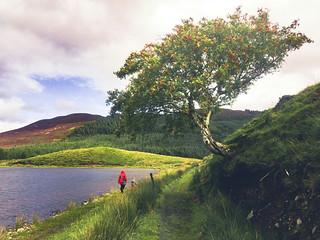 Drumleen lake walk