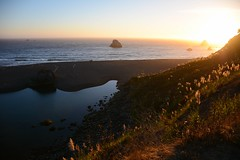 Sunset on the Pacific Coast (LauraJSwindle) Tags: coastalrocks sand flora russianriver foliage botanical river nikond7100 water westcoast sunset coastalflora pacificocean ocean pacificcoast beach cliff california norcal northerncalifornia waterscapes waterscape ca september2018 wantaghfairfield nyca usa