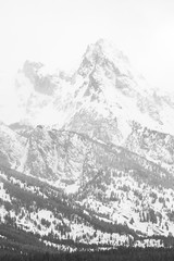 Grand Teton National Park, Wyoming. March, 2018. (Guillermo Esteves) Tags: fujifilm blackandwhite landscapes grandtetonnationalpark fujifilmxt2 grandteton nationalparks wyoming unitedstates jackson us