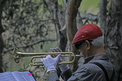 Trumpet (iansand) Tags: trumpet trumpeter music musician homebushbay