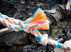 Strands 2 (S's images) Tags: south devon brixhm harbour quay fishing ropes lobster pots blue orange black