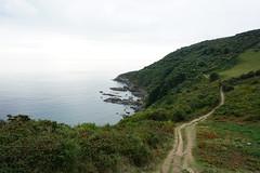 Coast (mark1830) Tags: coastpath road winding long