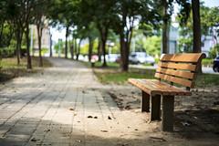 椅 (moseskim27) Tags: carlzeissultron50mmf18 f18 taiwan zhubei 竹北 zeissikonvoigtlander park m42 chair