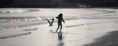 . (AnneStany) Tags: beach plage blackwhite noirblanc oiseau mouette couchésoleil birds seagull run courir childwood children kid enfant lessablesdolonne été vacances summer memory holidays