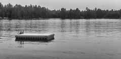 Out on a Dock (Alex Luyckx) Tags: lanternbayresort lanternbay morrisonlake lake retreat water summer cottage campfire friends social gravenhurst ontario canada muskoka cottagecountry sony sonya6000 sonyepz1650mm13556oss