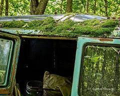 Old Car City 135 (augphoto) Tags: augphotoimagery abandoned decay old truck weathered white georgia unitedstates