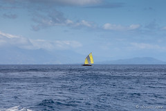37 Sailboat on the Water 3276 (Ursula in Aus) Tags: jimclinephototour milnebay png papuanewguinea tawali