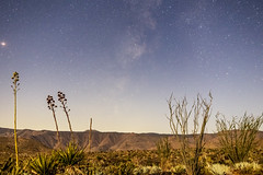 Milky Way With Moonlit Foreground In the Anza-Borrego Desert 2 (slworking2) Tags: desert anzaborrego anzaborregodesertstatepark sky agave ocotillo julian california unitedstates us
