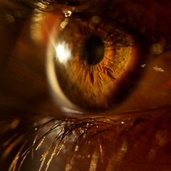 Lg g4 Makro lens . . . . . . . . . .    #makro  #photography #lgg4photography #sun #sunset #sunrise #nofilter #sand #sky #pink #günbatımı #shot #gündoğumu #Timelapse #timelapse #clouds #day #goldenhour #thegraphed #bokeh #silüet #eye #eyephotography #the_ (eylulkizil2005) Tags: günbatımı moodynature clouds naturelandscape silüet nofilter sun thegaleryofmagic sand sunset eye timelapse sunrise bokeh lgg4photography pink goldenhour day photography sky eyephotography thegraphed gündoğumu bokehbliss shot makro