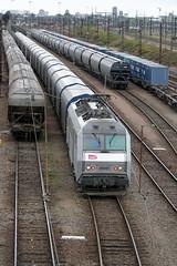 [FR-SNCF] BB 26061 + rame fret revenant à vide de Basse-Indre >>> @SPDC >>> Ebange 12/05/2017 DSC_3601_DxO (yael.flament1) Tags: bb26000 bb26061 bb 26000 26061 arcelor mital nacco spdc sp saintpierre saintpierredescorps saint pierre des corps triage yard fret freight 1500volts 15kv transport coils aluminium container containers conteneurs portesconteneurs conteneur trémies céréalières