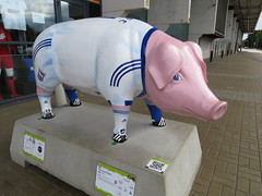 Porkman Road (Ian Press Photography) Tags: ipswich suffolk pig pigsgonewild hospice sculpture sculptures art st elizabeth pigs gone wild porkman road portman itfc town football club