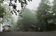Turkey (Artvin) Picnic places in Karagol (Black Lake) (ustung) Tags: foggy mist landscape picnic blacklake karagol borcka artvin turkey