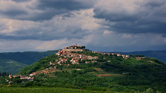 View of Motovun (ValterB) Tags: valterb valter view village tourist travel tree tourism trip trees town tower landscape light sky shadow scenic summer shapes scenery blue building buildings beautiful bright green istra istria motovun mountain hill road grass field panorama grapes vineyard wine house church