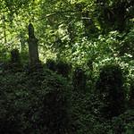 green graves thumbnail