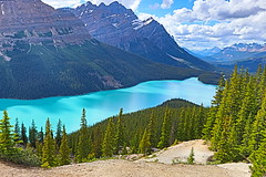 Peyto Lake :) (bbosica20) Tags: letsexplore canadianrockies icefieldsparkway 2018 banffnationalpark banffnp alberta albertacanada rockymountains glaciallakes mountains mountainsarecalling amazing beautiful incredible wonderful pictureperfect picturesque