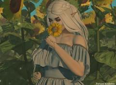 TRUTH VIP AUGUST CONTEST (Ern.) Tags: secondlife second life truth hair junbug swallow ears elf elven sunflower yummy maitreya fantasy