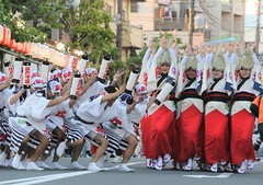 Tokyo Koenji Awa-Odori(Dance) (seiji2012) Tags: 高円寺 阿波踊り 夏祭り 着物 ゆかた tokyo dance festival kimono japan