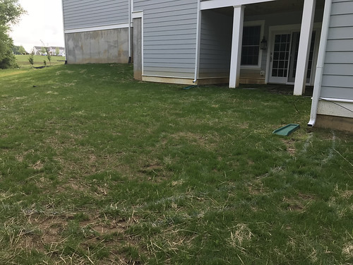 Current Project (Patio)