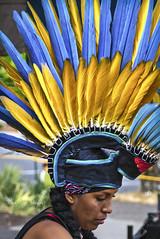 Mayan Dancer (Darrell Wyatt) Tags: dance feather headdress latin