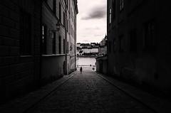 A walk in Stockholm (Frederik Trovatten) Tags: stockholm sweden blackandwhite blackandwhitephotography streetphotography streetphoto streetphotographer noir monochrome monochromatic street streets public walk walking fine art fineart fineartphotography city bnw photography