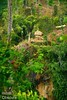 IOI_7562 Jungle Outpost (Indah Obscura) Tags: green hilly jungle elevated bamboo lookout post